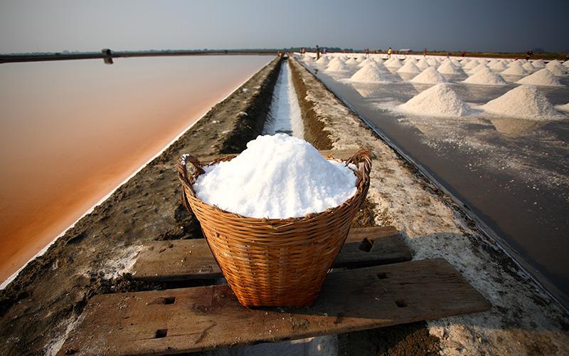 salt-pond-harvest.jpg
